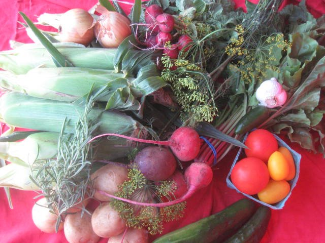 Picture of CSA box in August